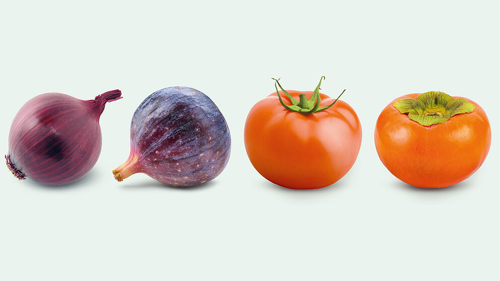 Hardly to distinguish: A fig and a red onion as well as a tomato and a persimmon